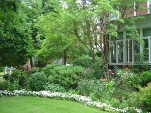 garden 075